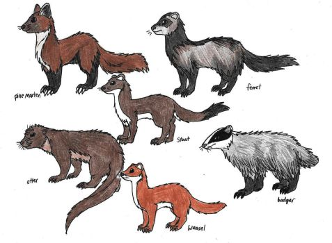 Mustelids by WolFkId27