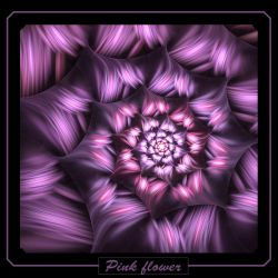 Pink flower by gitte