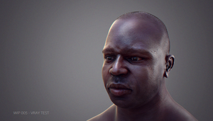 Face Anatomy Study - WIP - Vray Render Test by kewel72000