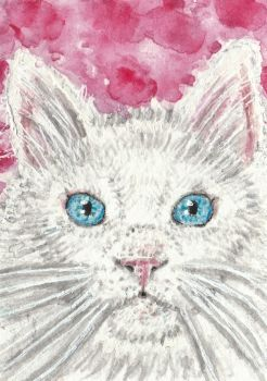 white cat face watercolor ACEO original painting by tulipteardrops