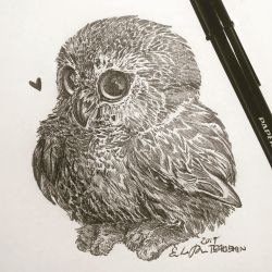 Inktober Day 19: Bird by TsaoShin