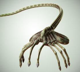 Facehugger V2 by Thyke