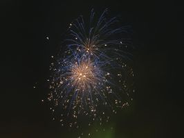 Dundee Fireworks 5/11/13 - 1 by Pictish-Artist