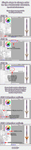 How To Edit Color by Rofeal
