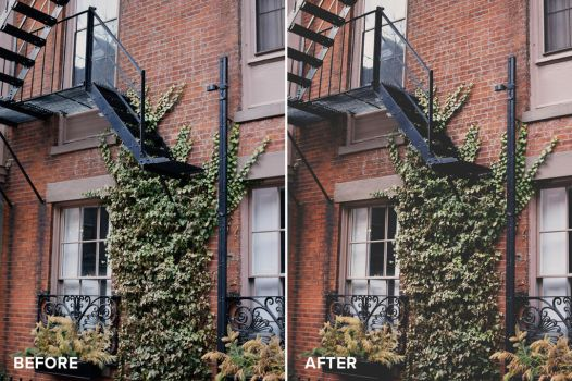 Matte Series Photoshop Actions Before/After 3 by filtergrade