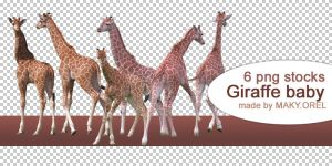 PNG STOCK SET: Giraffe - baby by MAKY-OREL