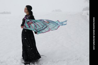 Winter Moth 9 by Kuoma-stock