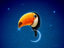 Toucan by vladstudio