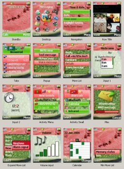 Watermelon theme SE Z530i by AnastasieLys