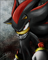 Shadow The Hedgehog by Shadreym