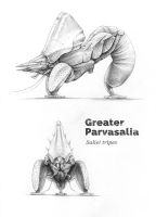 Greater-parvasalia by MichaelBeaudry