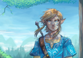 Link- Breath of the Wild by AnaHss