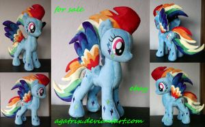 Rainbow Power Dash for sale! by agatrix