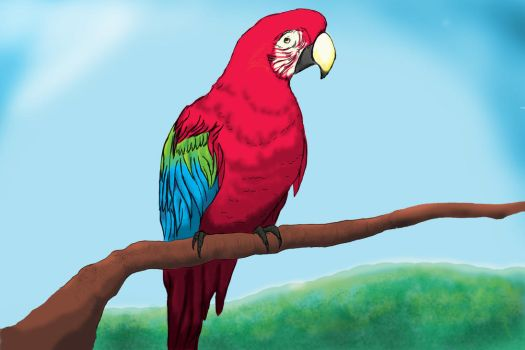 Green Winged Macaw by AJ-ven