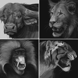 Greyscale speedpaint studies by RogueLiger