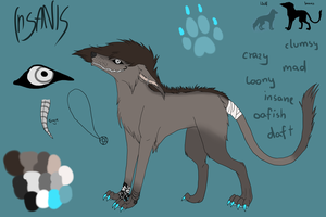 Insanis New Character Sheet by Kundlica