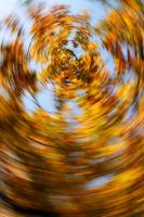 New Spin on Autumn - I by froggynaan