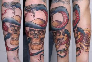 skull with snake... by graynd