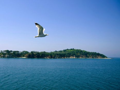 On the air through the sea. by sunlookout