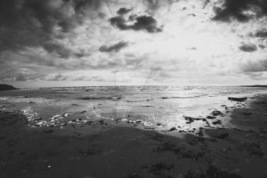 Long Beach (BW) by MbOscarsson