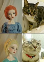That is why we called MaskcatDoll lol by Maskcat