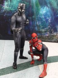 The Panther And The Spider by Neville6000