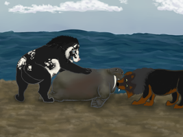 RoH-Pinned Down by magikwolf