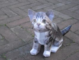 Cat papercraft by TimBauer92