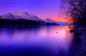 Queenstown NZ by AL-AMMAR