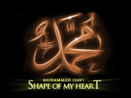 the Shape of my Heart by Samirs