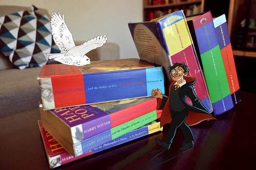 Booklr Project - Harry Potter by The-Troglodyte