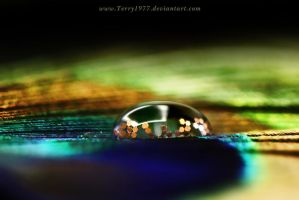 Strass ... by Terry1977