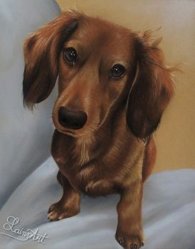 Dachshund - Pastel Commission by secrets-of-the-pen