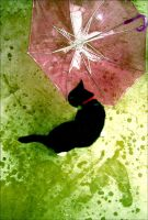 Cat AND Umbrella by gsan