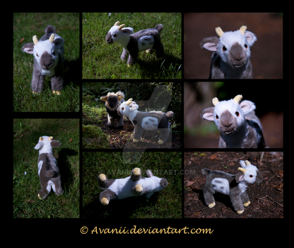 Plushie Commission: Atlas the Goat by Avanii
