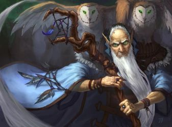 Elf Owls Keeper by Nord-Sol