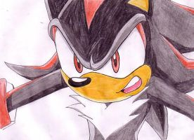 Shadow from Sonic X by Leryu