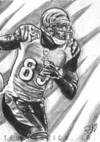 Chad Johnson by tdastick