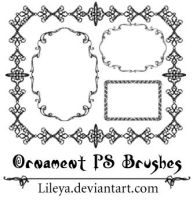 ..:Ornament Frames:.. by Lileya