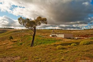 Werribee Gorge Scape by daniellepowell82