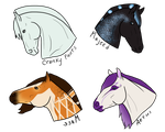 Giveaway Headshots by Allicorn