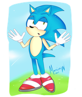 Sonic Mehh by Marmimow