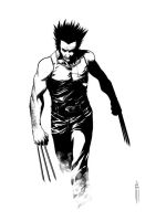 Wolvie - Finalized by Botonet