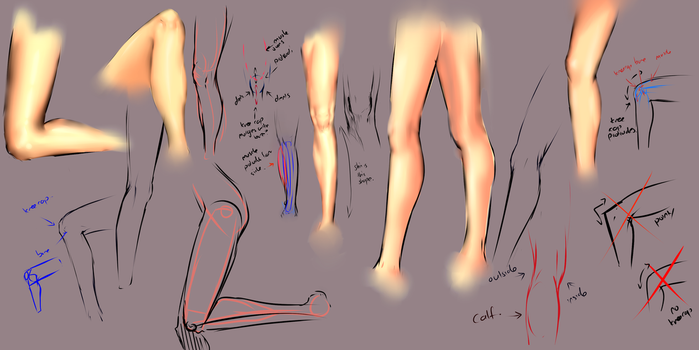 Drawing legs by moni158