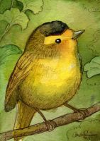 Birdie Watercolor mini 7 by BlueBirdie