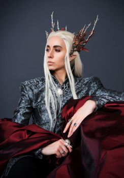 Thranduil Cosplay by Abessinier