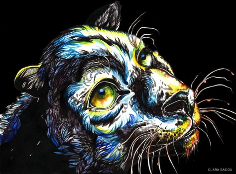 Panther by ClaraBacou