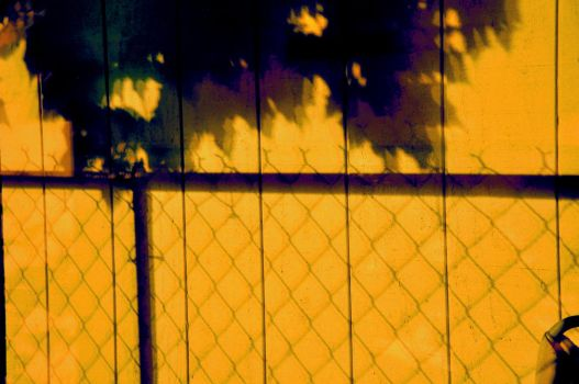 Fence Shadow by STAARFOX