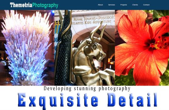 Front of photography website by m0osegirlhunter