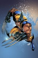 Wolverine: Joe and Tim by Nubry